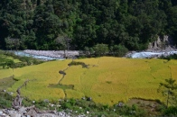 Nepal, trek to the ABC #1